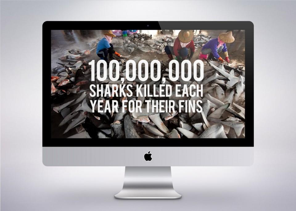 Anti Shark Fin Campaign wallpaper