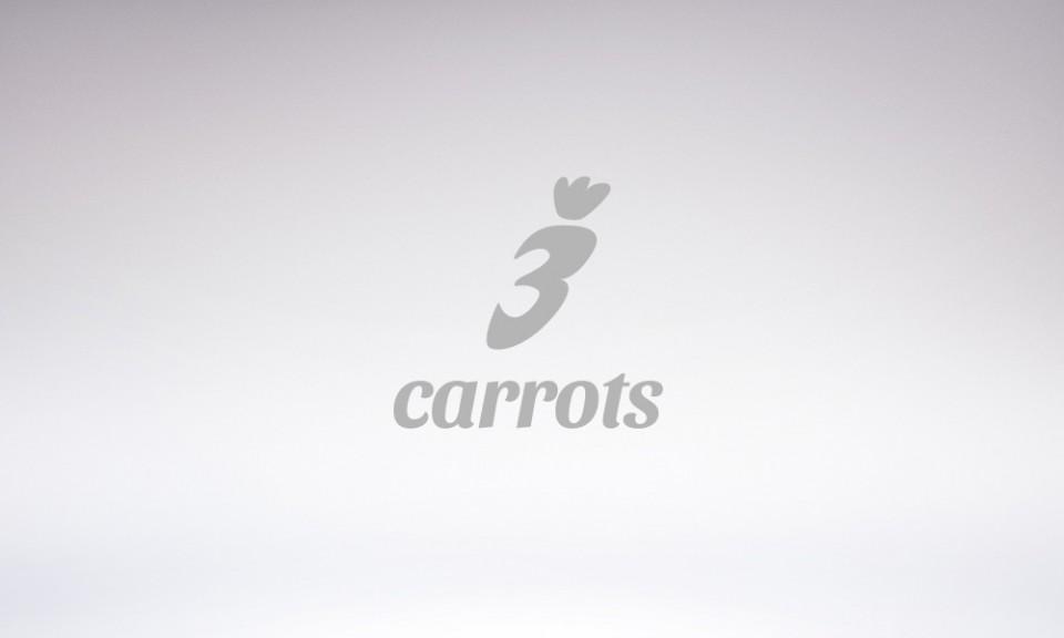 3 carrots mortgage brokers branding